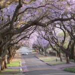 Touraco Tours and Transfers: Pretoria Tour