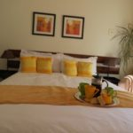 Touraco Guesthouse - Pretoria - Room 4